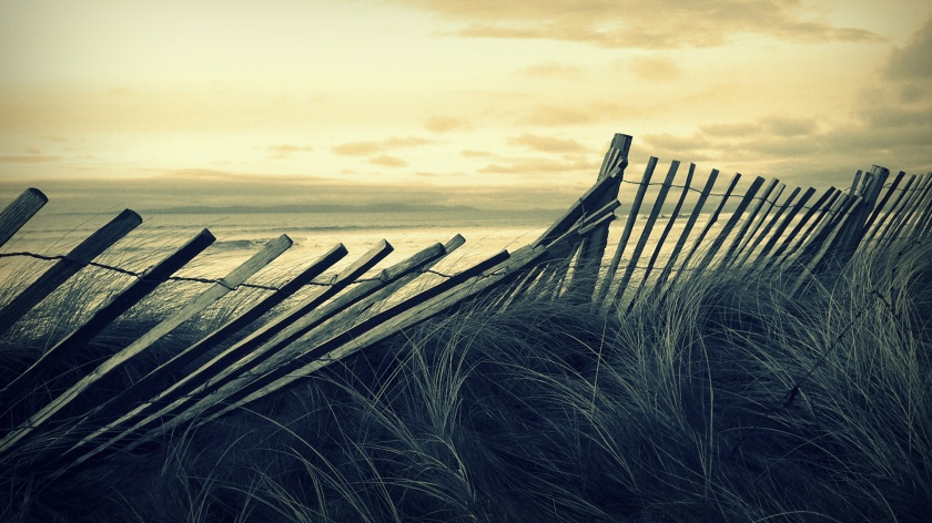 old_fence-1920x1080