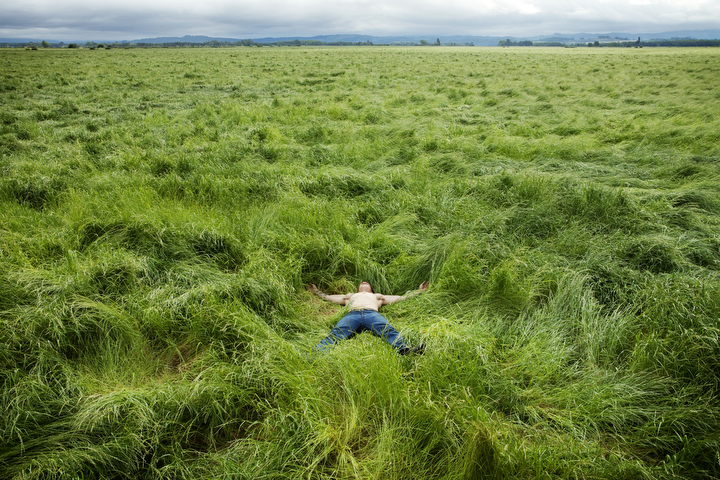 Shirtless Man Laying in Giant Field of Grass